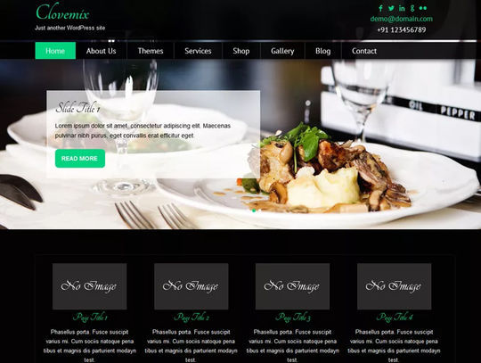 foodwpthemes11.jpg